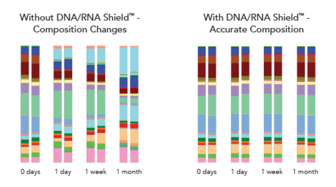 Microbial composition comparison with and without DNA/RNA Shield