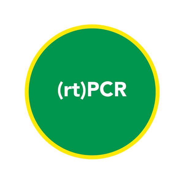Green circle with (rt)PCR inside