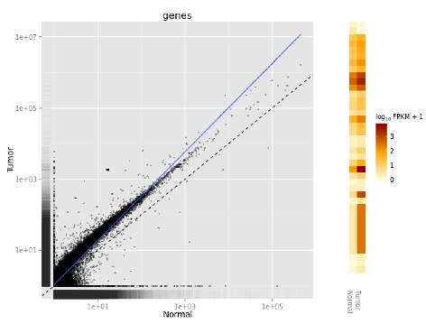 rna sequence plot