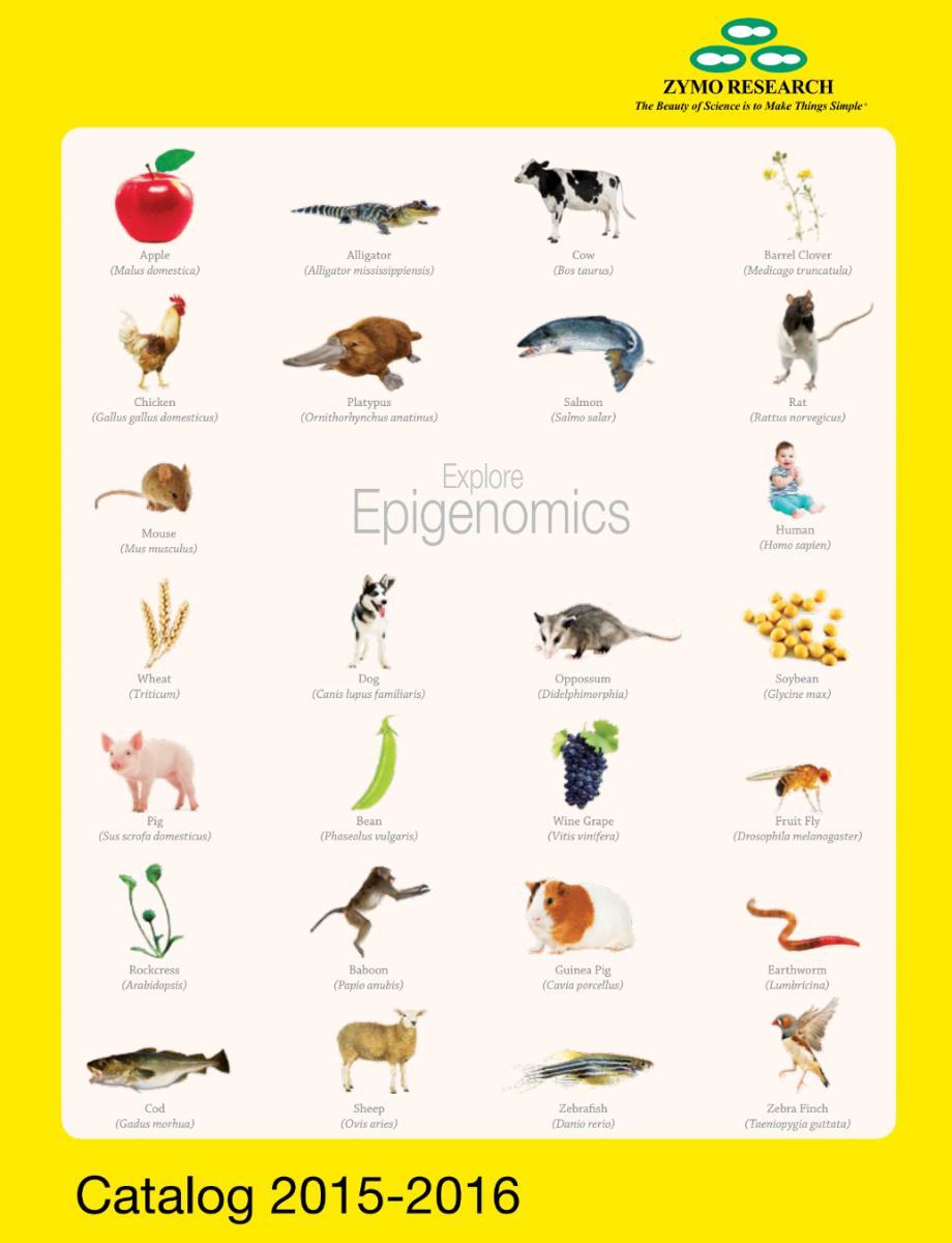 2015-2017 catalog cover