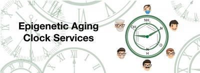 Epigenetic Aging clock services banner