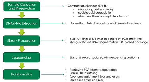 Factors that can cause bias in a microbiomics workflow