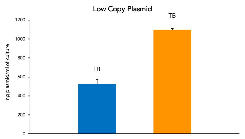Low Copy Plasmid
