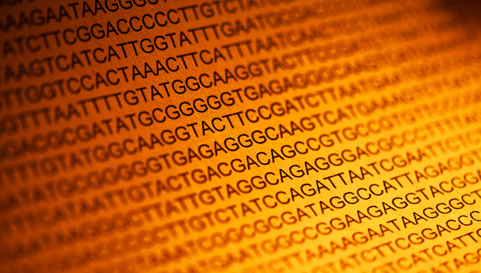 DNA Sequencing on paper