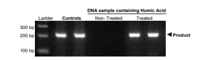 DNA sample containing Humic Acid