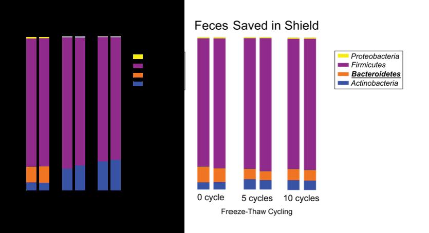 Fecal comparison chart