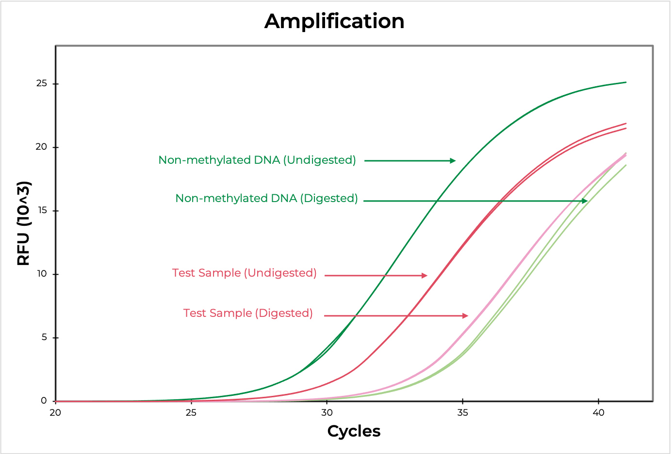 amplification graph
