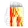 Clustering Heatmap