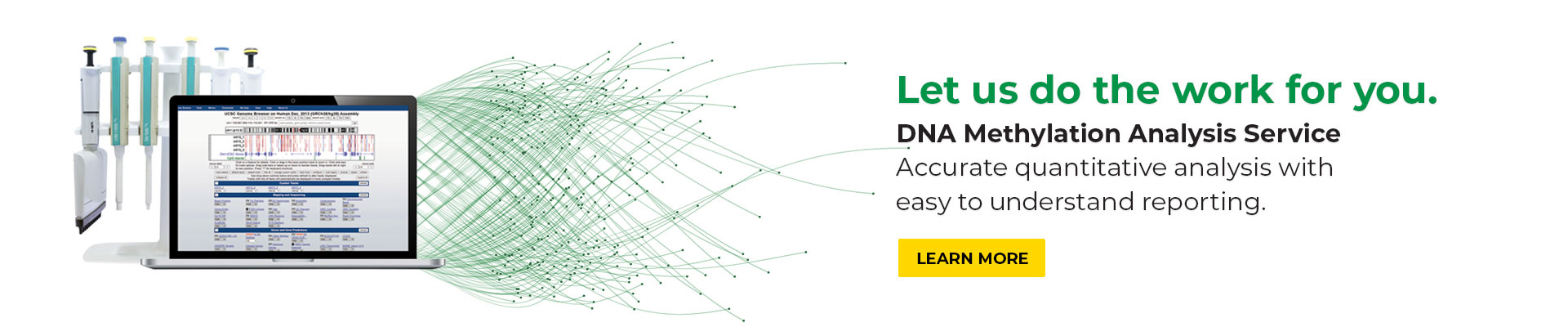 home page carousel banner for the Genmoe-Wide DNA Methylation Analysis