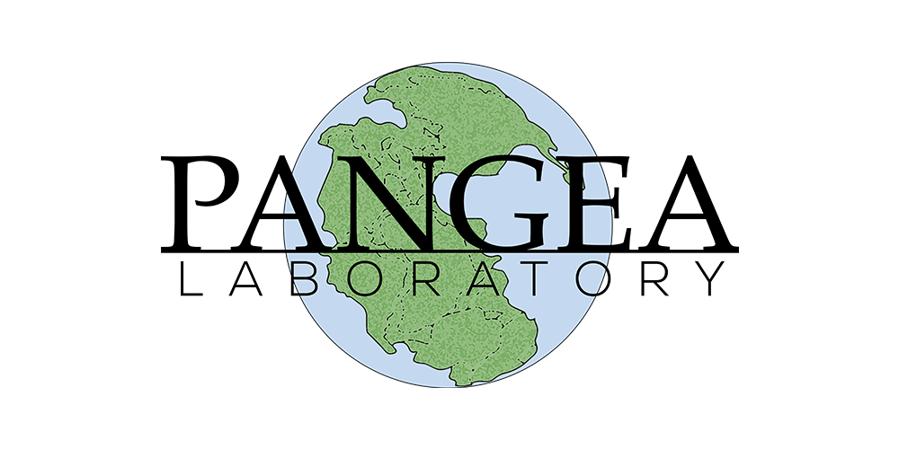 Pangea Image for Entities using Shiled