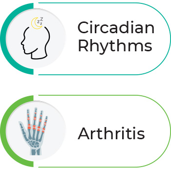 Two icons that text that reads Circadian Rhythms and Arthritis
