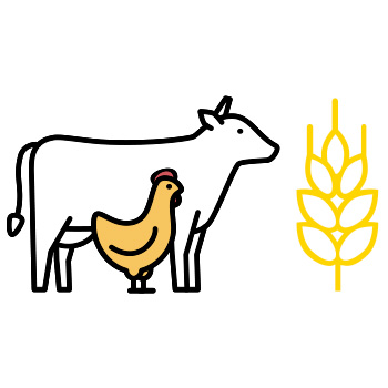 image of a cow, chicken, and wheat