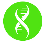 Image of a DNA Helix inside a green circle.