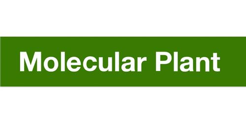 Molecular Plant Logo