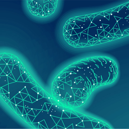 Microbiome Analysis Services