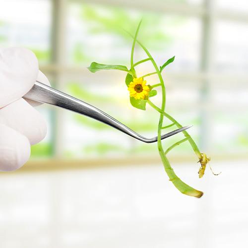 Nucleic Acid PUrification Services