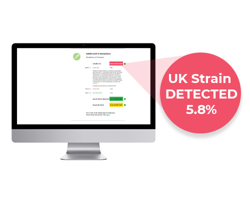 Computer monitor showing the strain detections