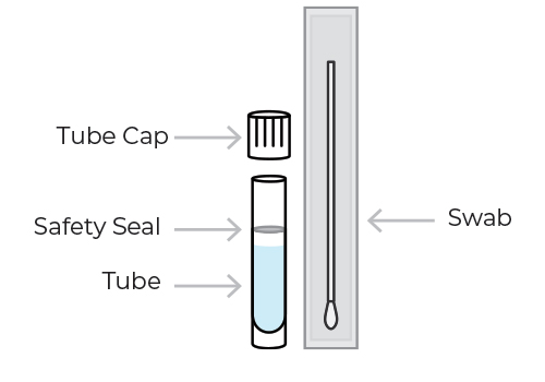 Image of the SafeCollect Swab Collection Kit contents