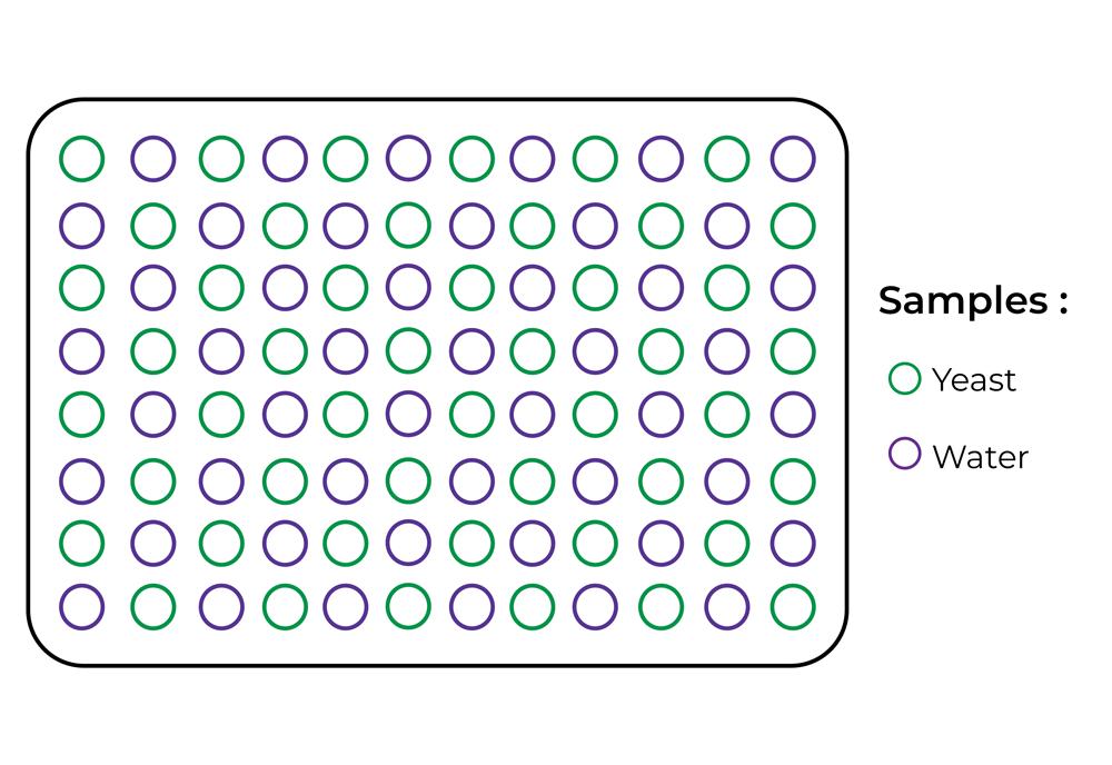 image of a rainbow sample plate
