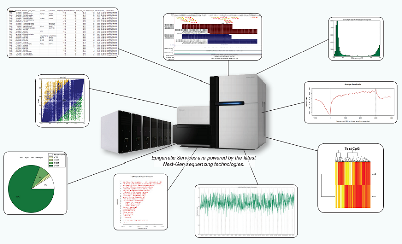 Next-Gen-Sequencing produced data charts
