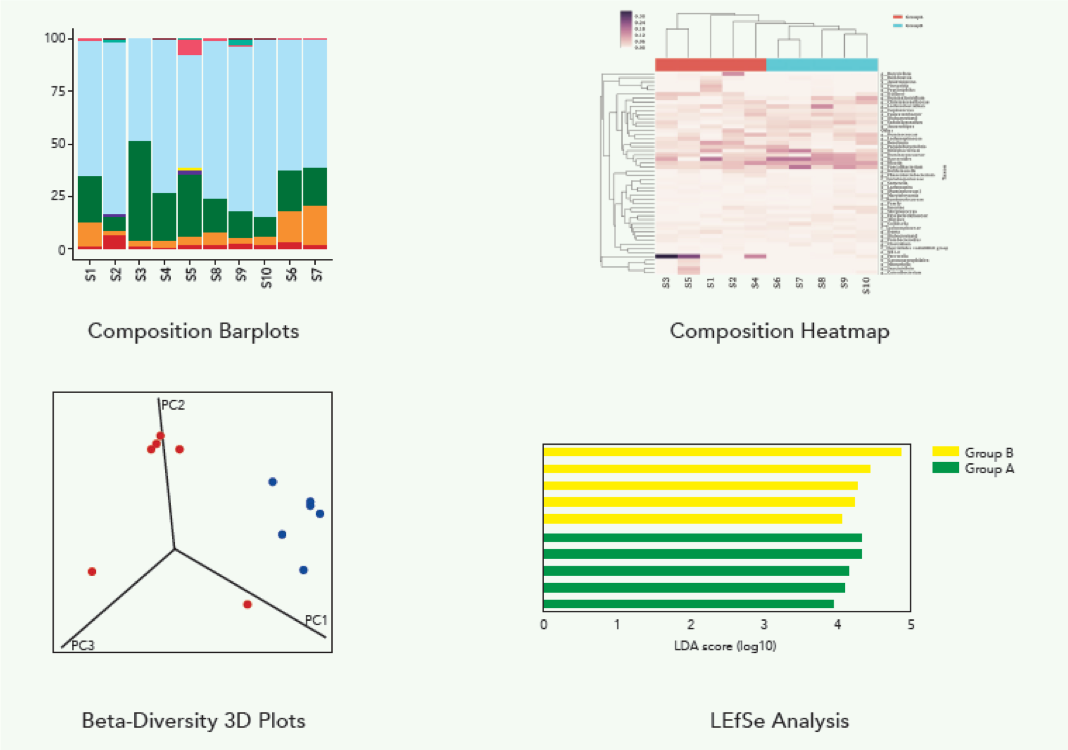Microbiome Analysis Services For Any Sample Type Zymo Research