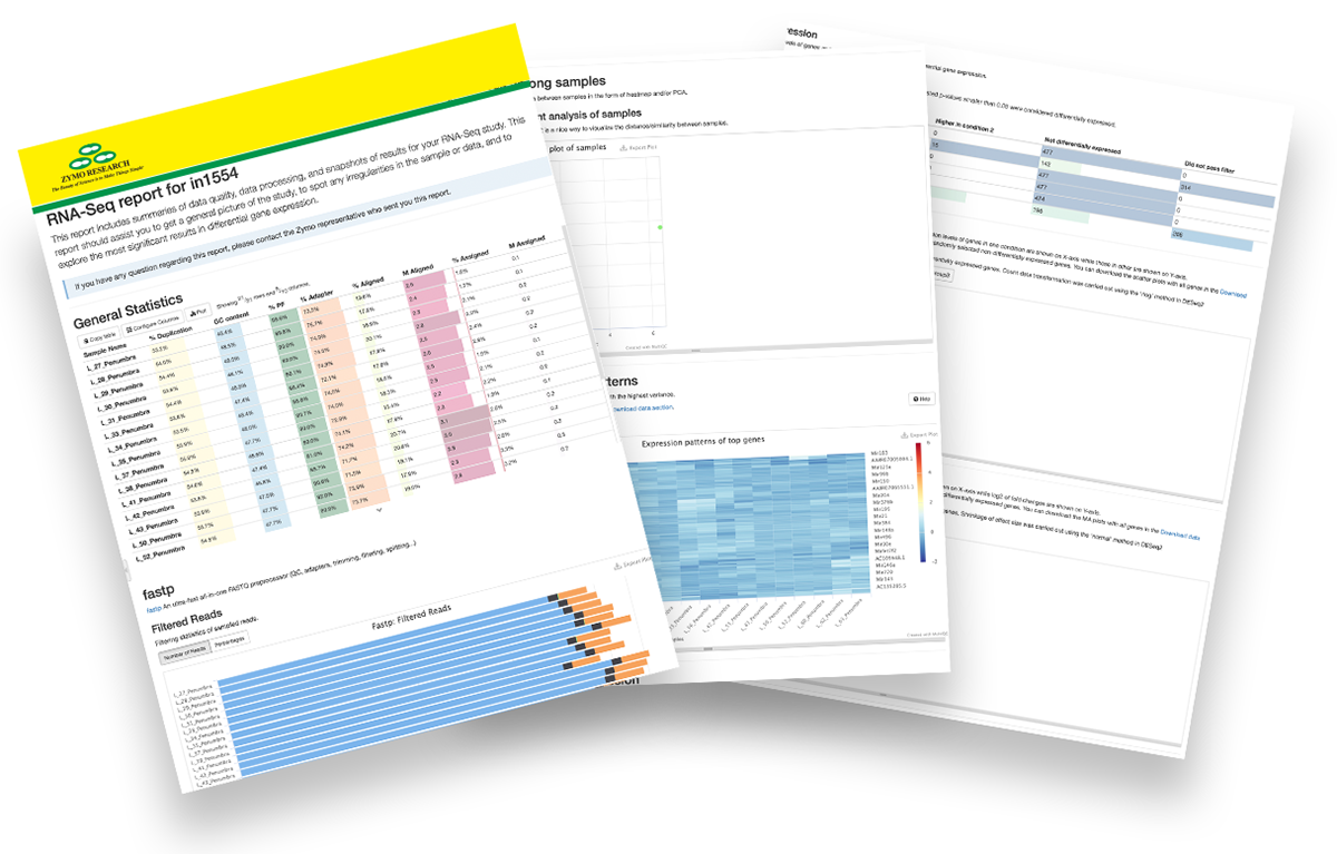 Image showing 3 pages of the small RNA-Seq report