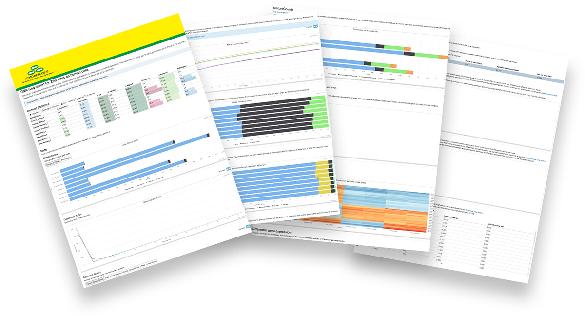 Image showing 4 pages of the total RNA-Seq report