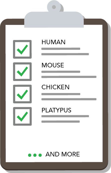 Clipboard with sheet of paper.  Human, Mouse, Chicken and Platypus are the options and they are checked off