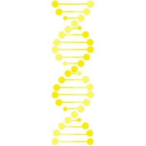 Cartoon yellow dna strand