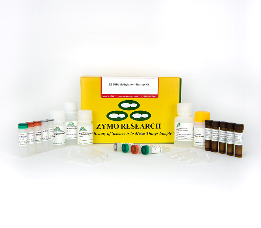 Methylation Startup Kit